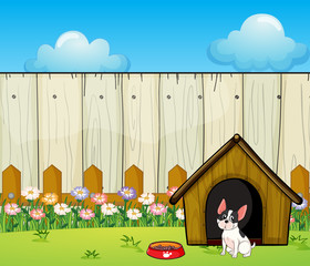 Tuinposter Honden A puppy in front of the doghouse inside the fence