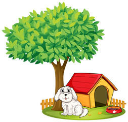 Poster Dogs A white puppy beside a doghouse under a big tree