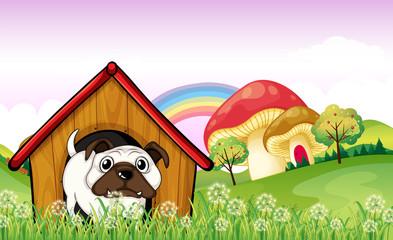 A bulldog in the doghouse near the giant mushrooms