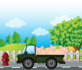 A green truck with pigs at the back