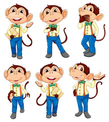 Different positions of a monkey