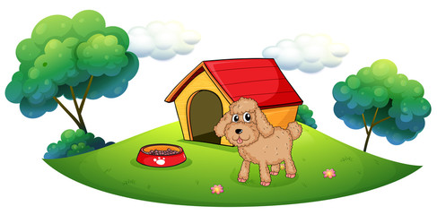 A brown puppy playing ouside the dog house