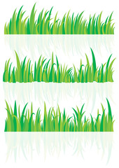 Vector is set a grass and shadow grass