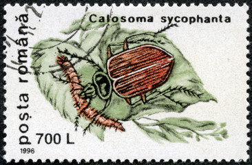 stamp printed in Romania shows bug forest caterpillar hunter