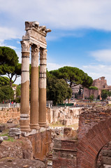 Fototapete - Ancient columns in Fori imperiali at Rome