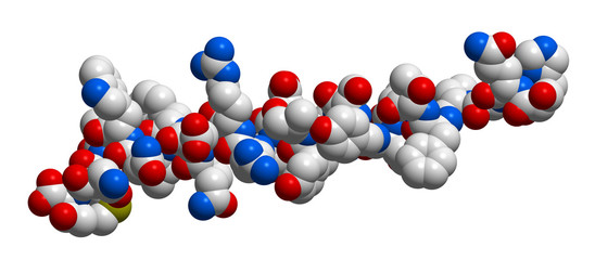 Hormone glucagon 3D molecular structure