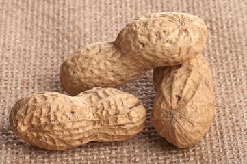 Cacahuètes sur une toile.