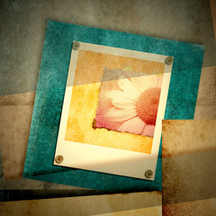 Daisy snapshot in geometric cuts card
