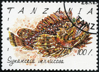stamp printed in Tanzania shows Synanceia verrucosa