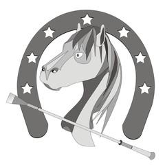 Fondo caballo_3