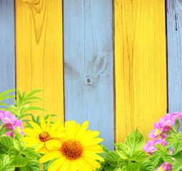 Fototapete - Summer background
