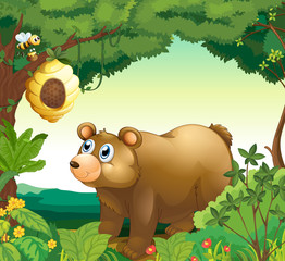 Wall Murals Bears A big brown bear staring at the beehive