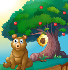 Türaufkleber Baren A bear in front of a big apple tree with a beehive