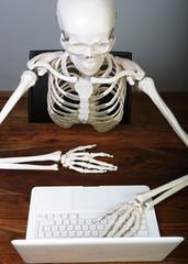 skelett am laptop