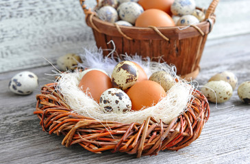 Different types of eggs in a nest on a old wooden background