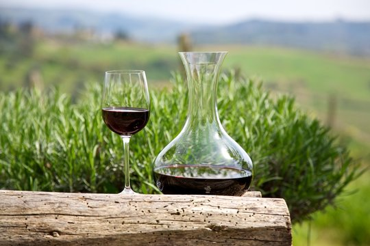 Red wine in a wine carafe and a wine glass in vineyard