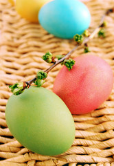 Easter eggs with cherry branch