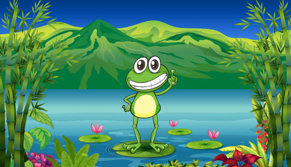 A frog standing above a water lily