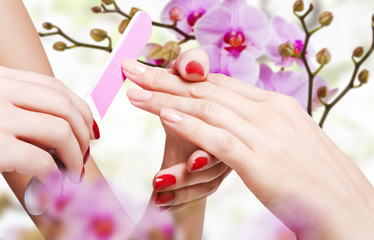 Wall Mural - Gentle care of nails in a beauty salon