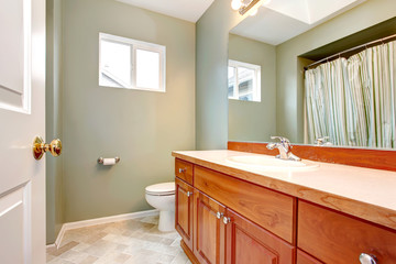Green clean new bathroom with wood cabients.
