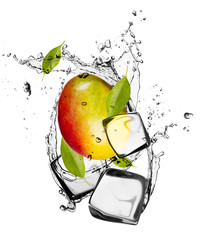 Poster In het ijs Mango with ice cubes, isolated on white background