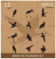 Set of silhouettes birds symbols