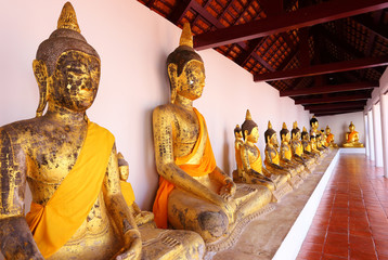 Row of Sacred Buddha images in Surat thani, Thailand