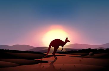 A sunset at the desert with a kangaroo
