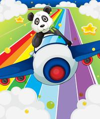 A panda riding in a plane