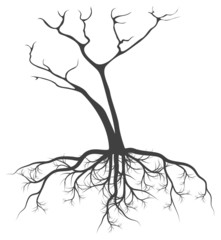 Dead tree with roots vector background