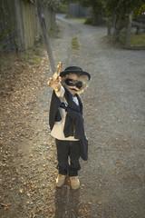 Young boy wearing a Zorro costume