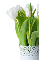 bouquet of white tulips