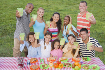 Multi-ethnic friends toasting at picnic table