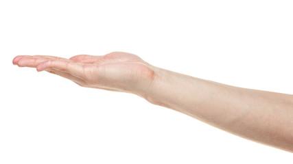 empty adult man hand
