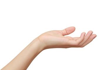 Woman hand holding, showing something isolated on white backgrou