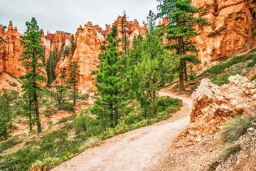 Slopes of Bryce Canyon