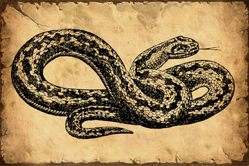 Retroplakat -Schlange