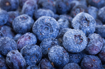Wet Fresh Blueberries Berries
