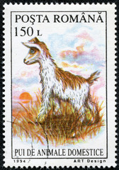 stamp printed by Romania, shows lamb