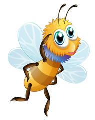A stripe bumblebee