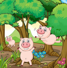 Foto auf Gartenposter Bauernhof Three pigs playing in the forest