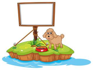 An empty frame near a puppy