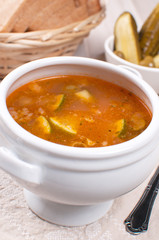 traditional russian soup with pickles