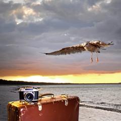 Fototapete - Sonnenuntergang mit Koffer und Fotoapparat am Meer