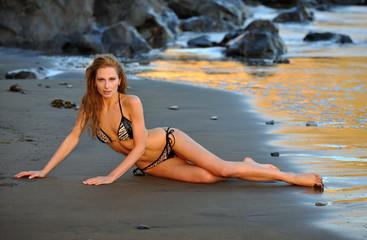 Sexy model posing at golden sunset at passific coast