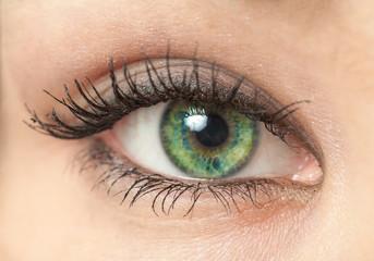 Woman eye macro closeup