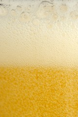 Beer with Rich Foam and Bubbles of Gas