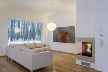 Designers interior - cosy living room