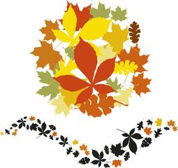 beautiful autumn leaves vector elements