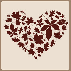 heart from beautiful autumn leaves